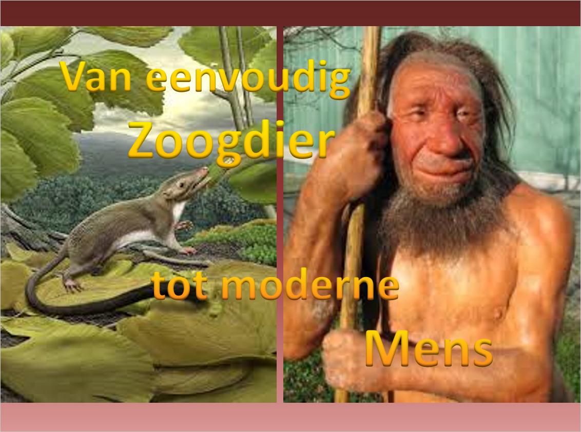 Jos Hoedeman vertelt zijn verhaal over de evolutie op aarde.