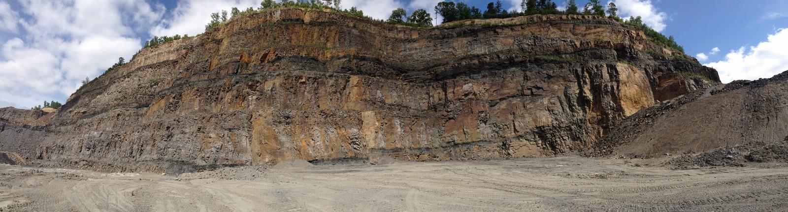 Op zoek naar plantfossielen op de Piesberg