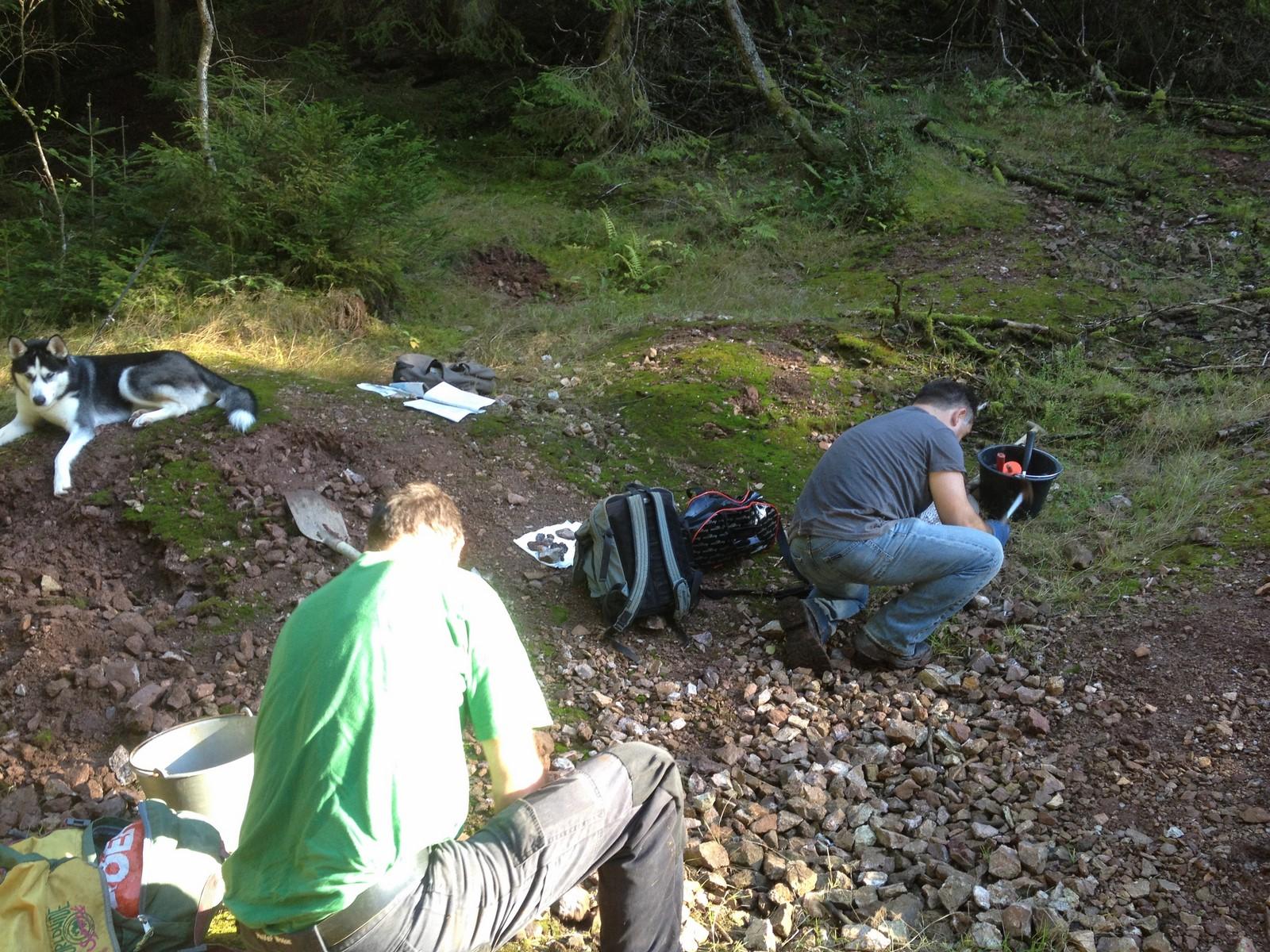 Op zoek naar mineralen op de Silberbrunnle Halde