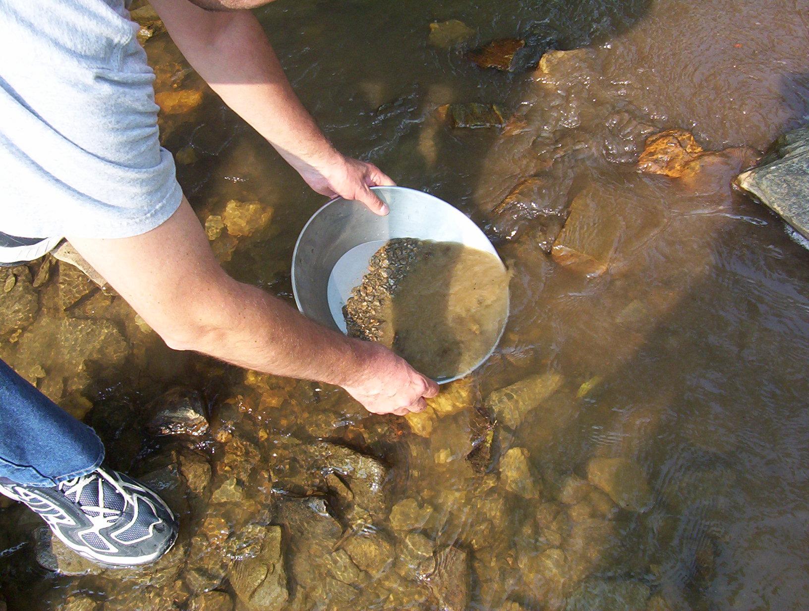 In de Rijn bij Spijk kun je zelf goud vinden bij een lage waterstand.
