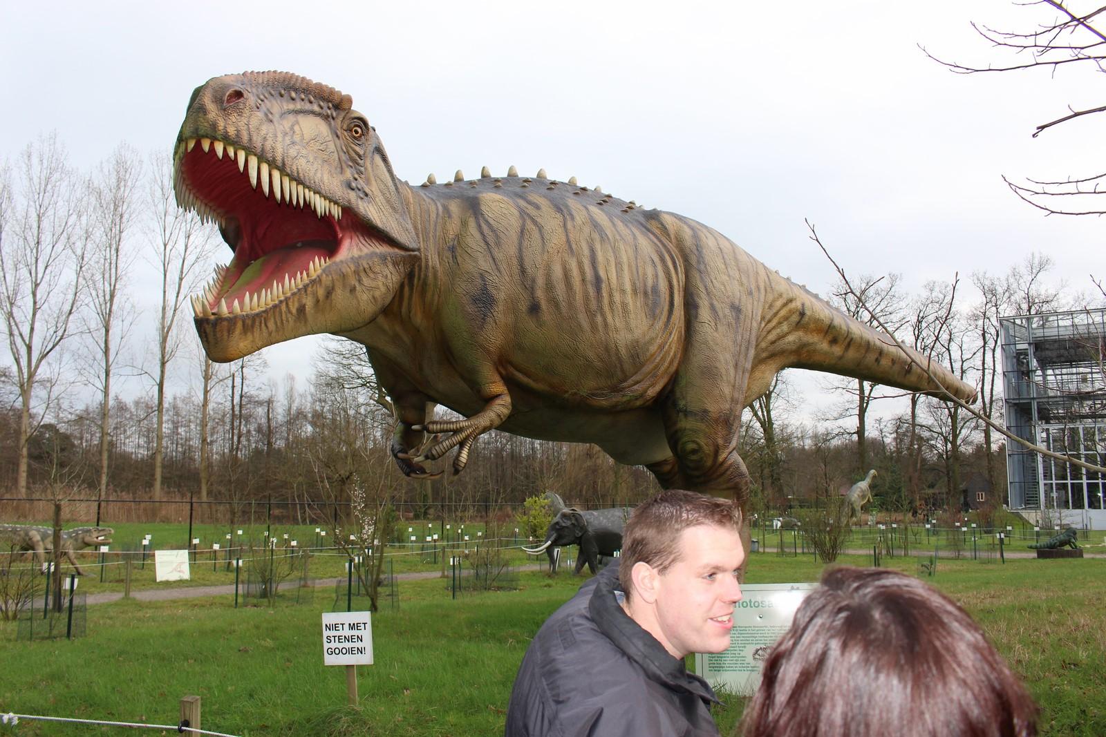 Enkele leden bij een Giganotosaurus in Oertijdmuseum 'De groene Poort'
