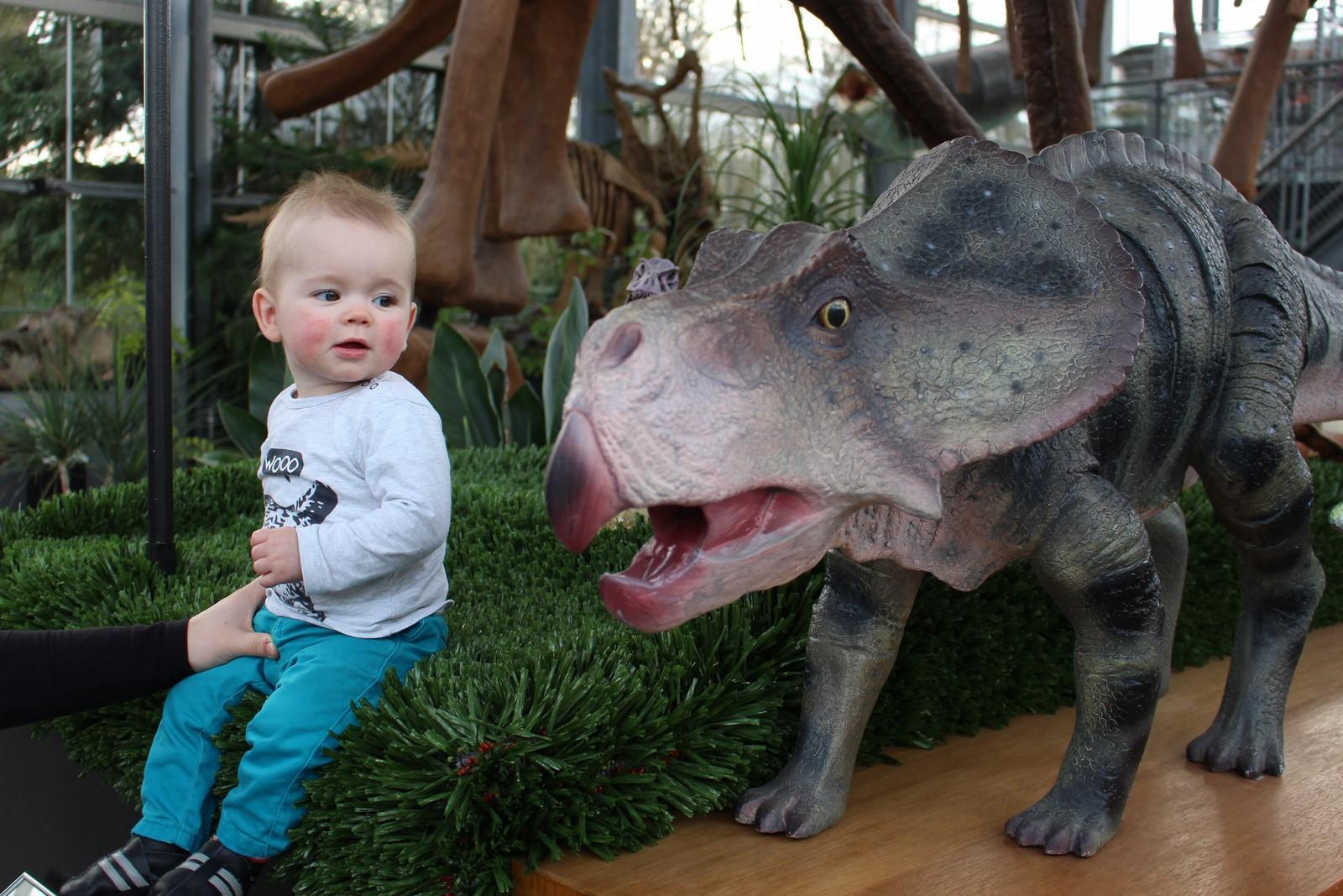 Het jongste Geo Oss lid bij een dinosaurus in Oertijdmuseum 'De groene Poort'