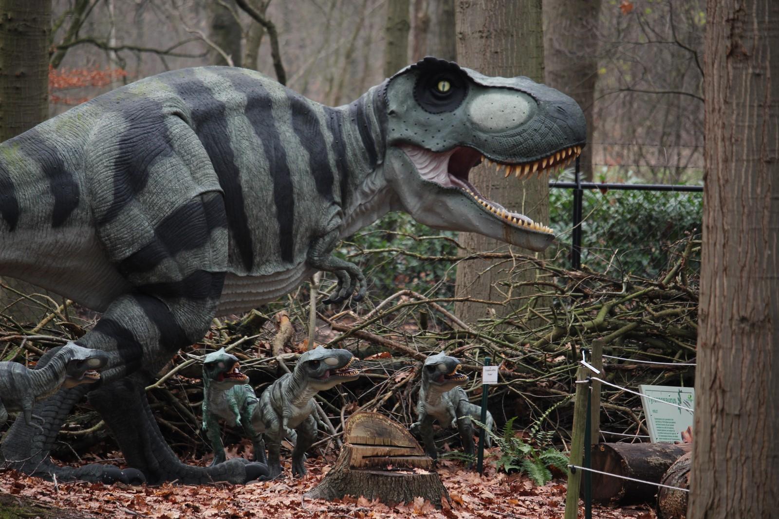 Een familie Tyrannosaurus Rex in Oertijdmuseum 'De groene Poort'
