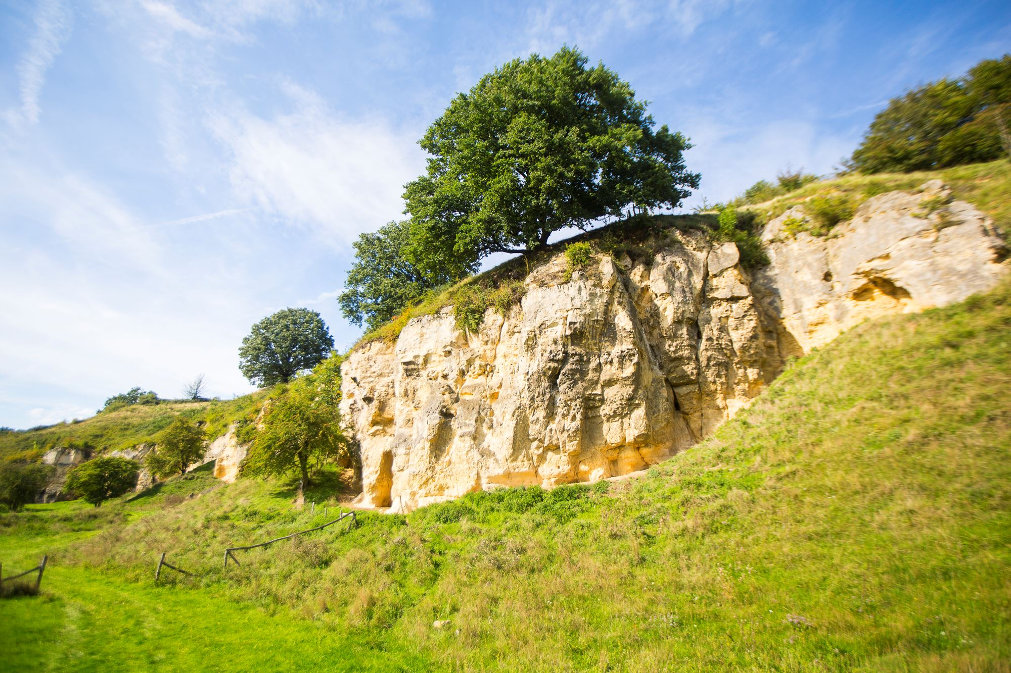 Mergelwand in Zuid-Limburg bij Schin op Geul