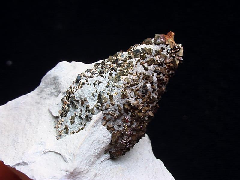 Dennenappelvormig Pyrietknolletje van ongeveer 3cm lengte gevonden door Bert de Ruiter (lid van Mineralsfoundation).
