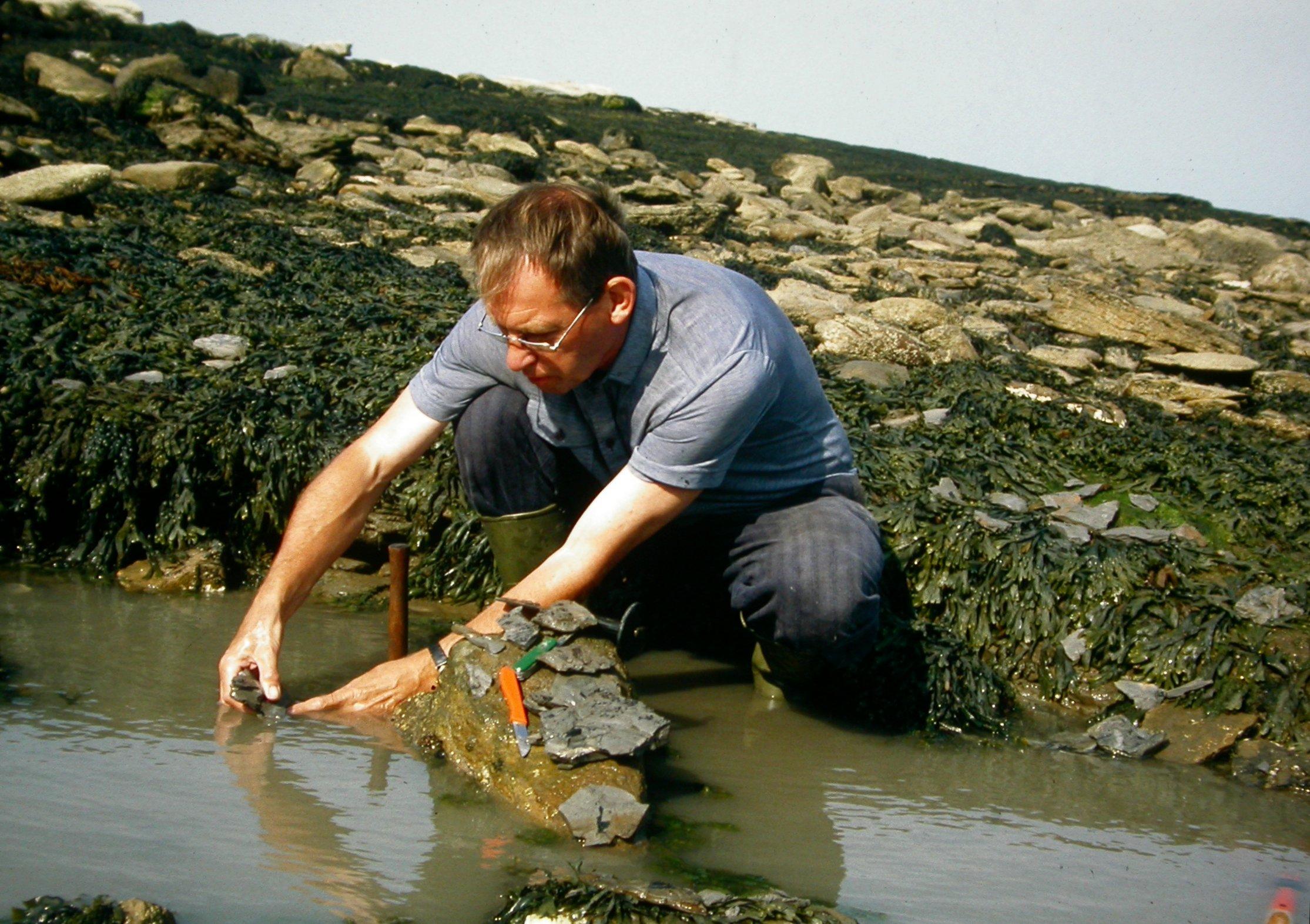 Hans Steur op zoek naar fossielen in Cayton Bay.